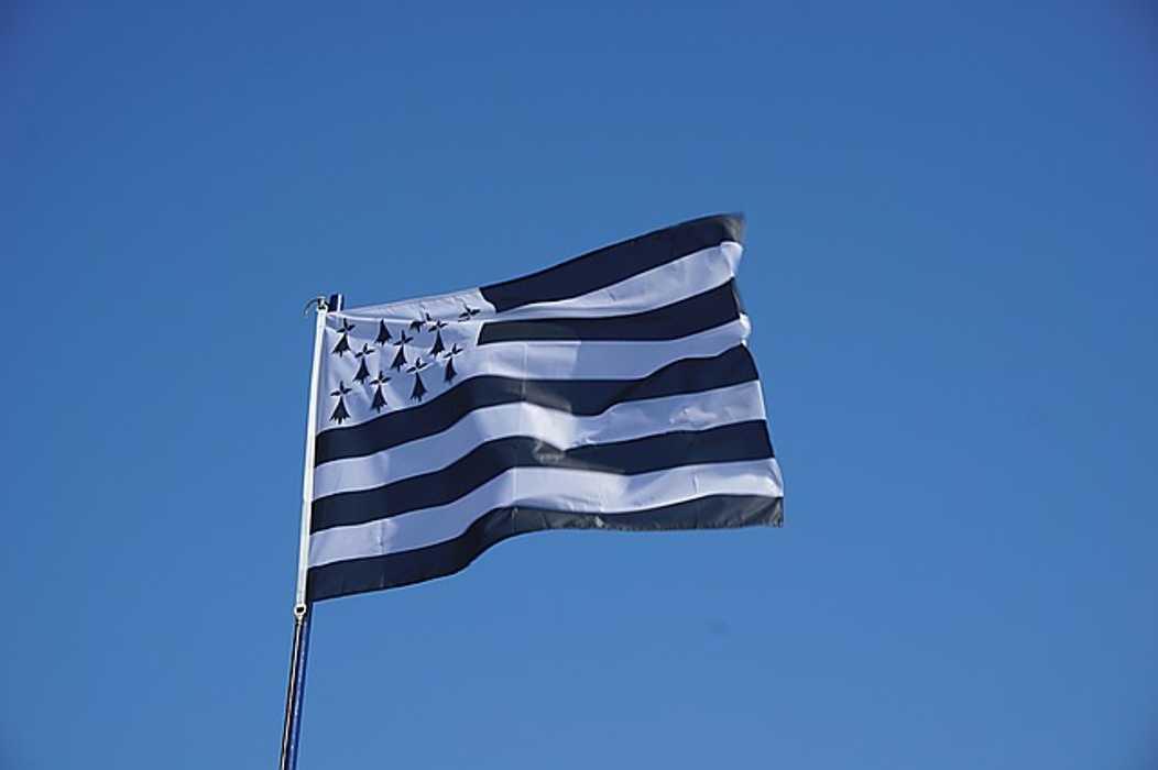 Vive la langue bretonne ! Bevet ar brezhoneg ! 0